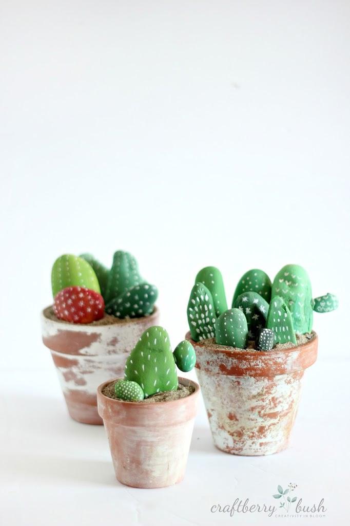 Cacti Rocks Craftbery bush