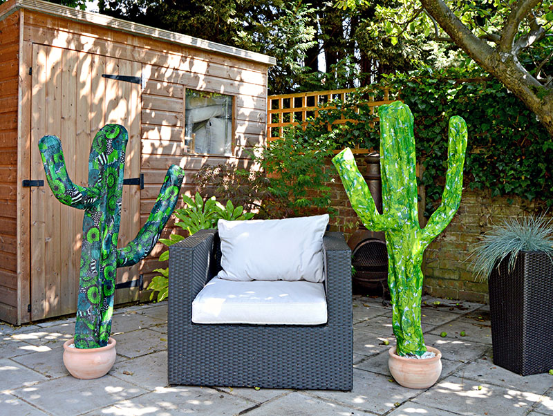 2 cacti patio