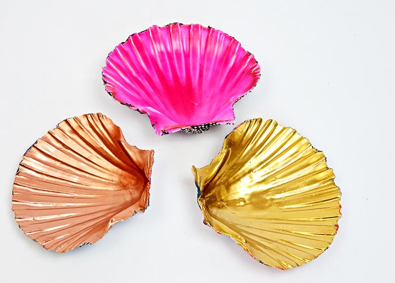 Scallop shell trinket dishes pillarboxblue.com
