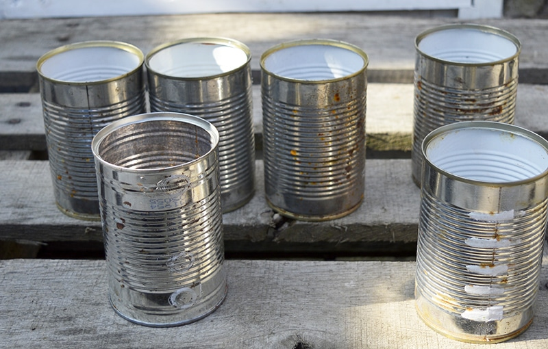 tin cans for window planter