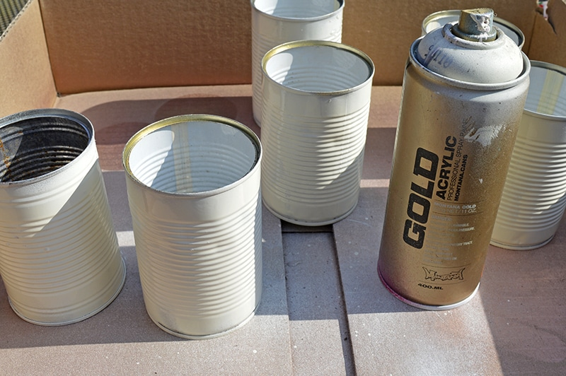 spraying the tin cans
