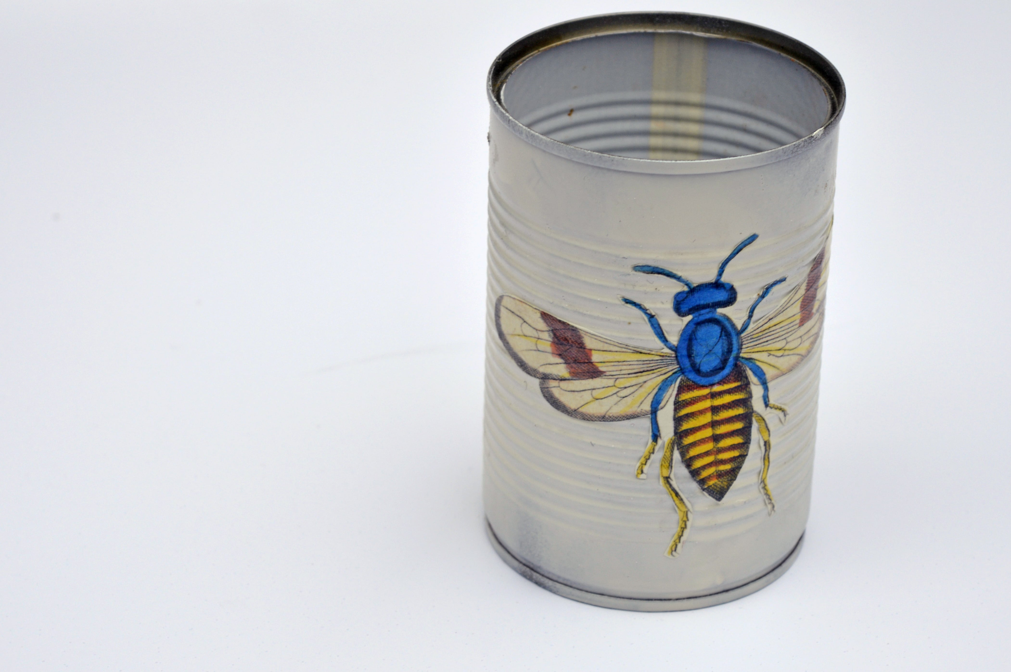 Sticking insect to front of tin can