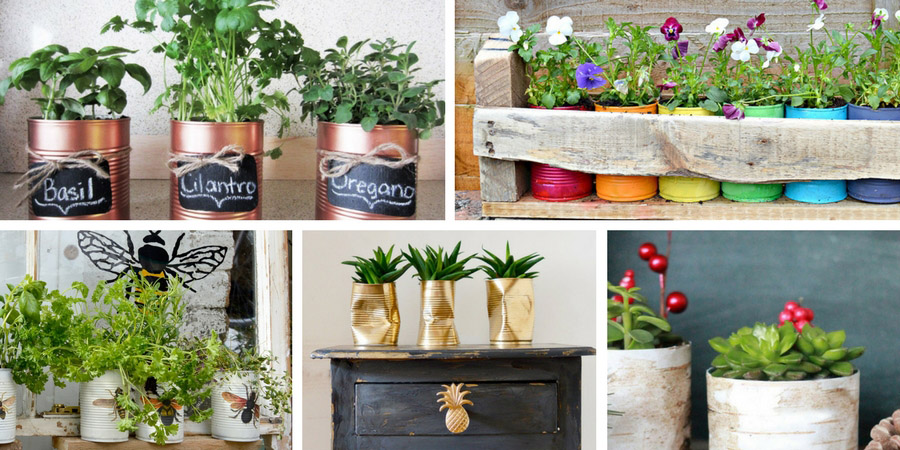 The best tin can planters. Tin cans make for great planters and here are five of the best ideas.