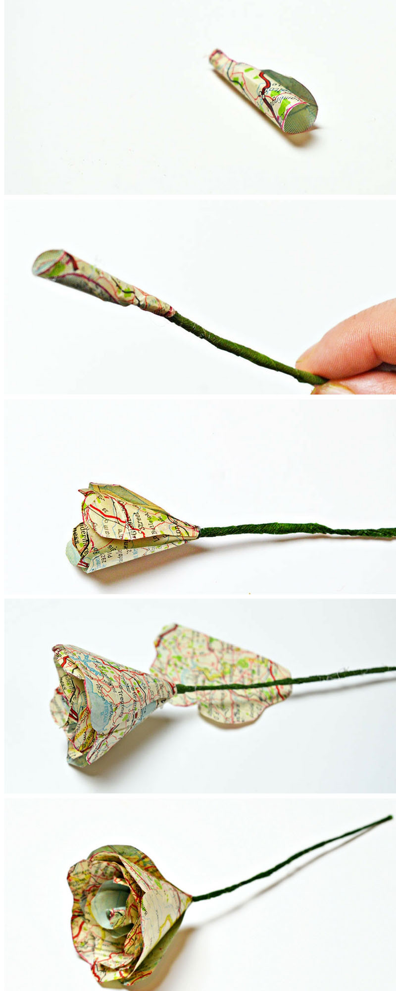 How to make gorgeous map roses for valentine's day.