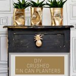 Pineapple DIY planters