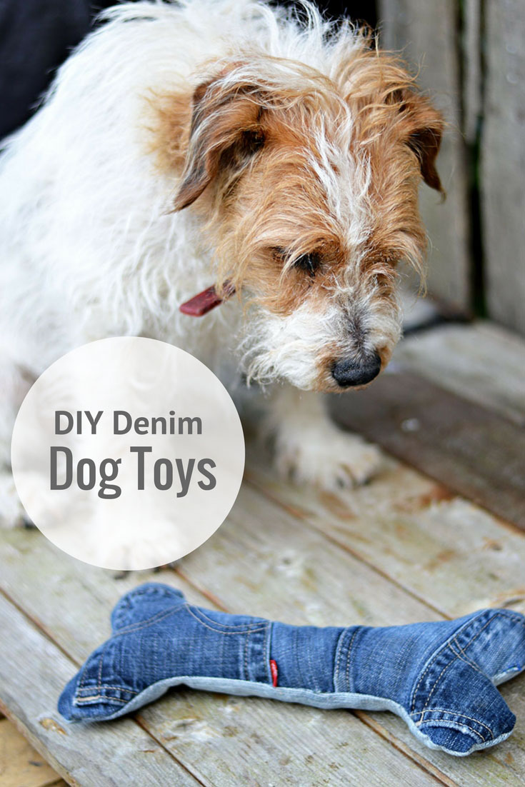 How to make the cutest handmade dog toys pillar box blue for Ripped jeans selber machen