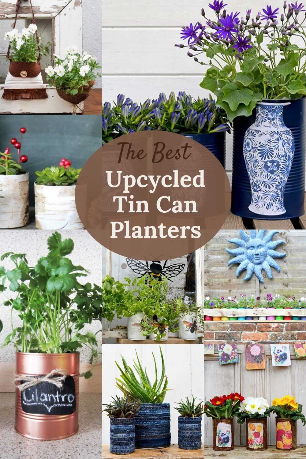 the best tin can planters