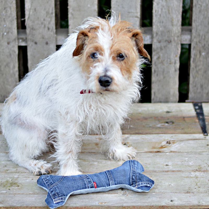 Make your dog the coolest handmade dog toys from your old jeans.