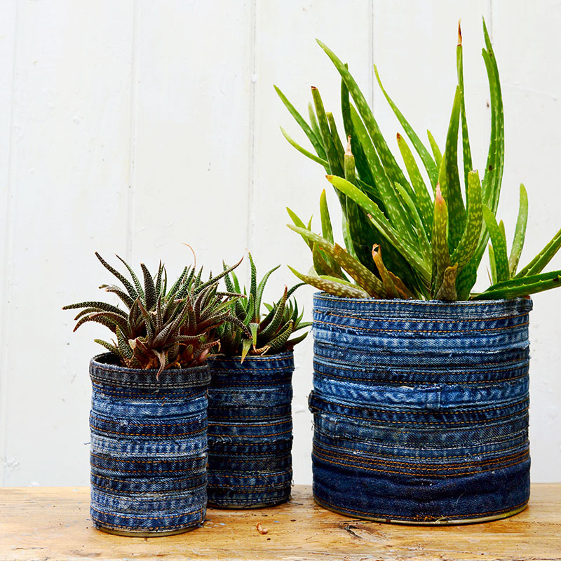 How to make goregous upcycled planters for your succulents. Just using tin cans and recycled jeans. Full tutorial no sewing involved.