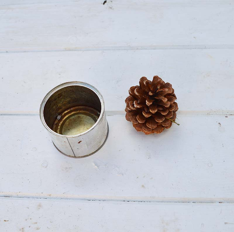 pine cone and tin can