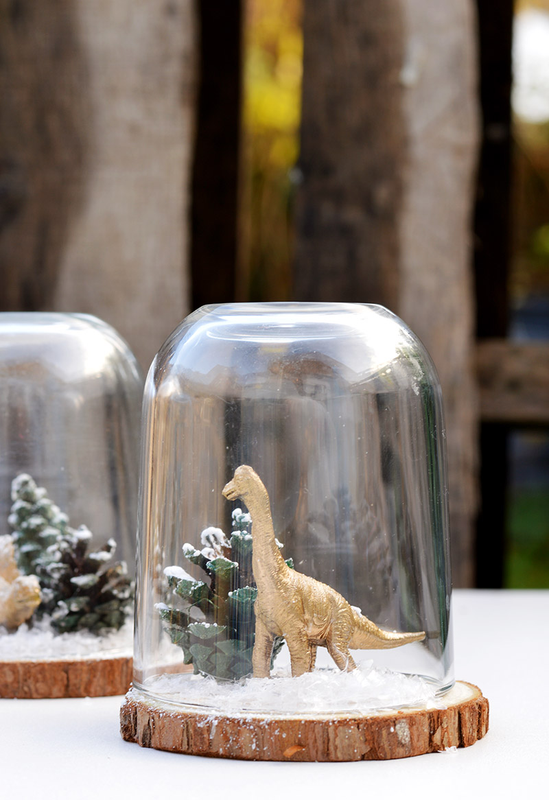 DIY Christmas Cloche, (dinosaur terrarium) using a repurposed Nutella jar.