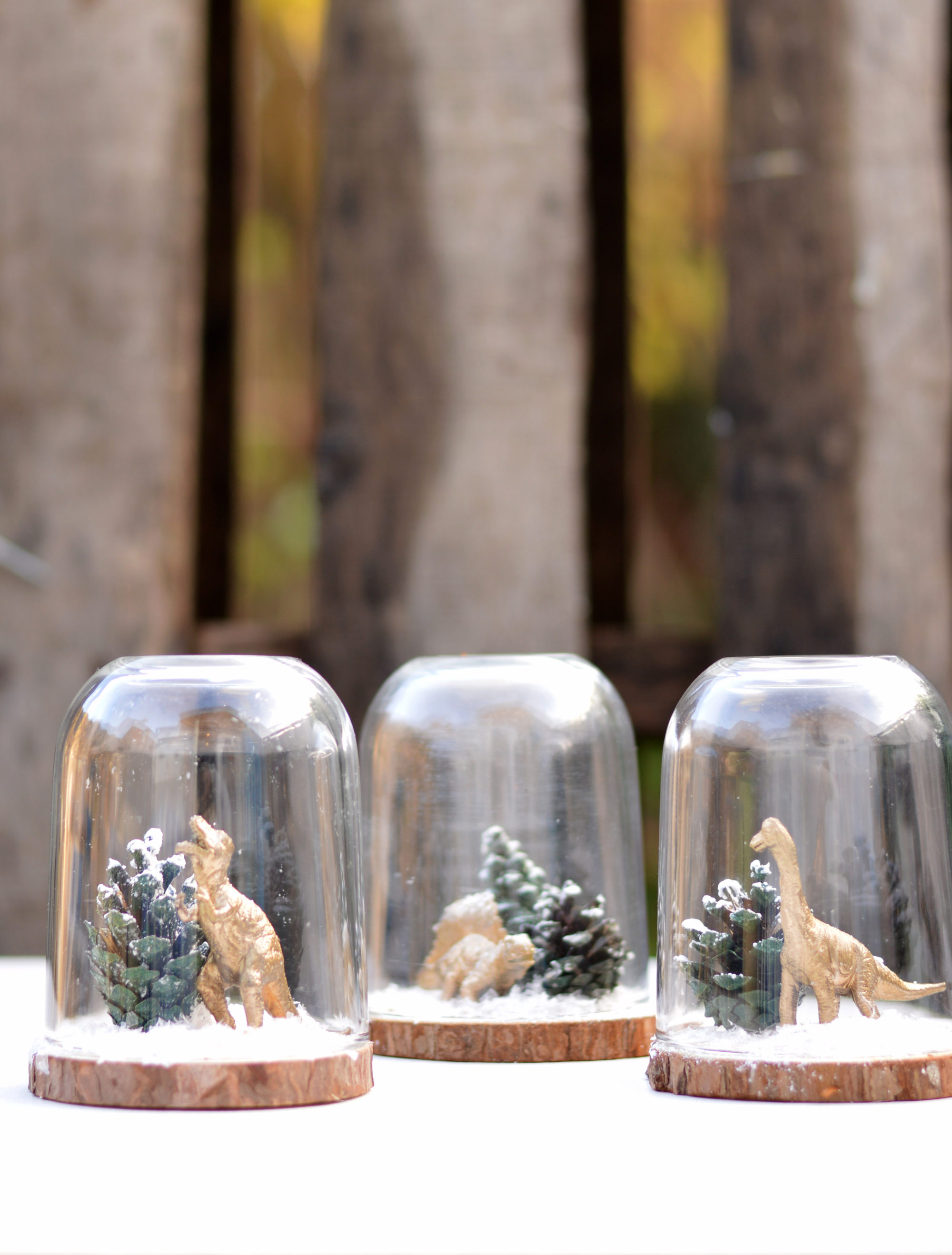 Add some fun to your Christmas decorations by repurposing a Nutella jar and making a super cute min Christmas Cloche (dinosaur terrarium).