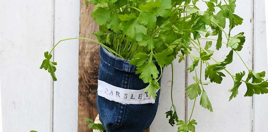 gutters easy fun and herbs herb garden indoor planter ideas pin