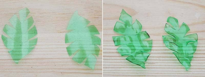 tropical leaf plastic bottle