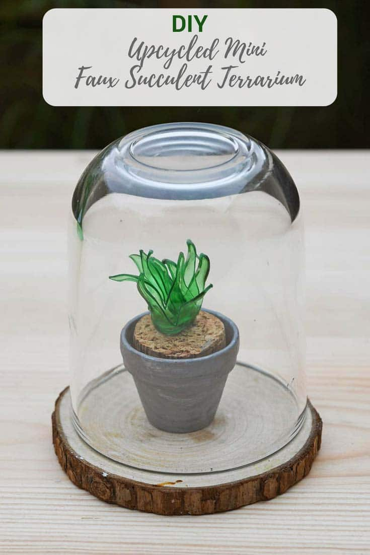How To Make A Plastic Bottle Faux Succulents Terrarium Pillar Box Blue