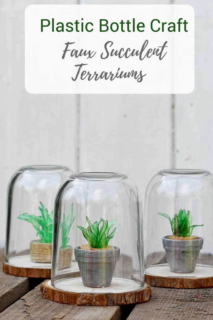 Plastic bottle craft mini faux succulents terrarium