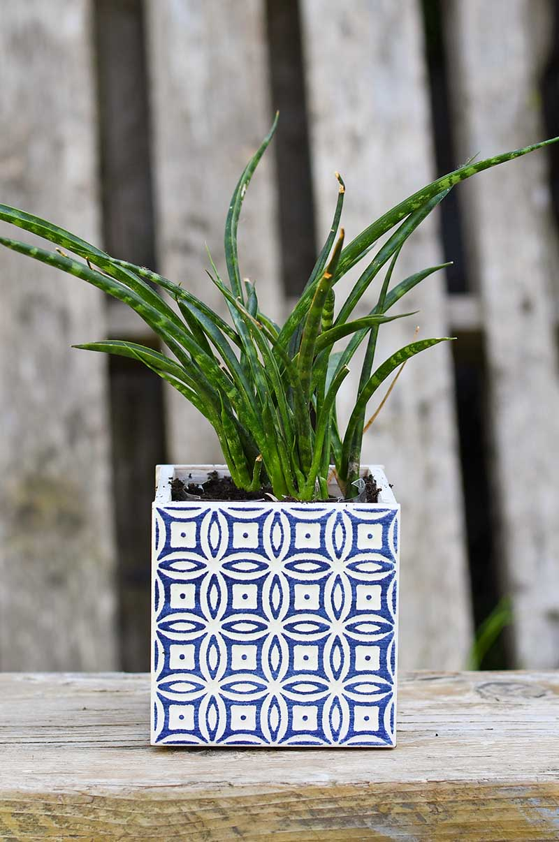 DIY Blue Moroccan tiled Planter