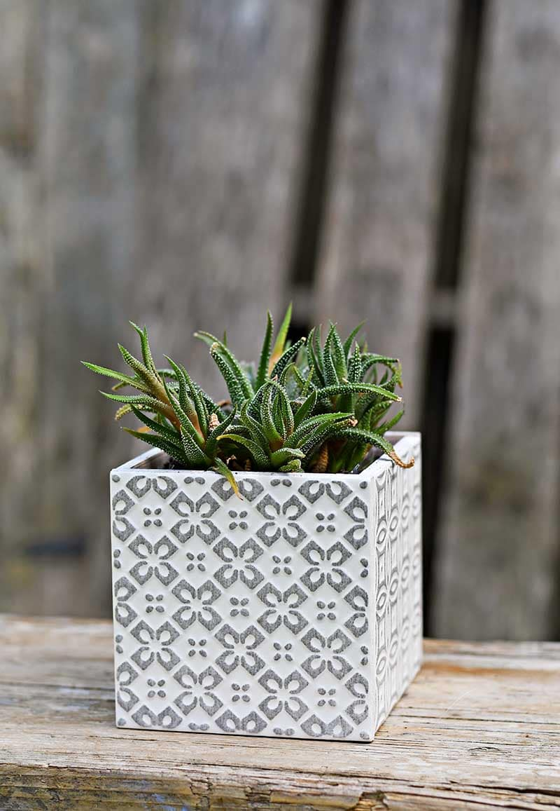 Square tile Boho Moroccan Planter in grey