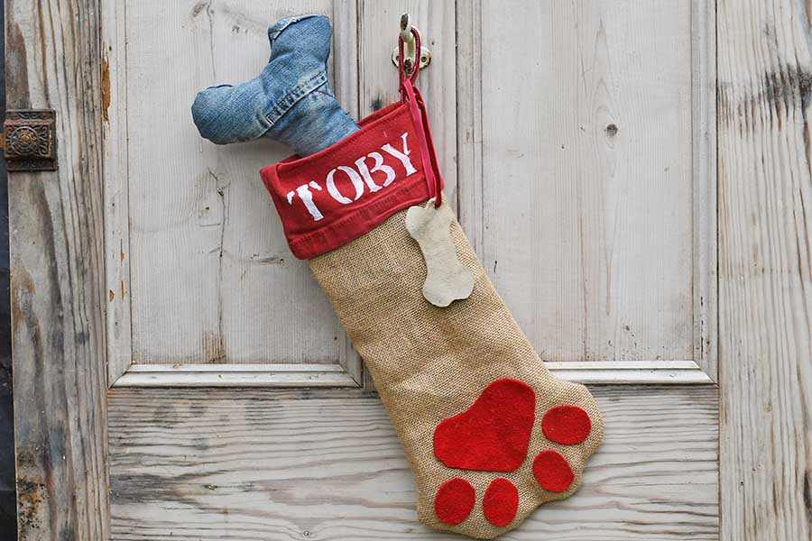Personalized Dog Christmas Stocking DIY