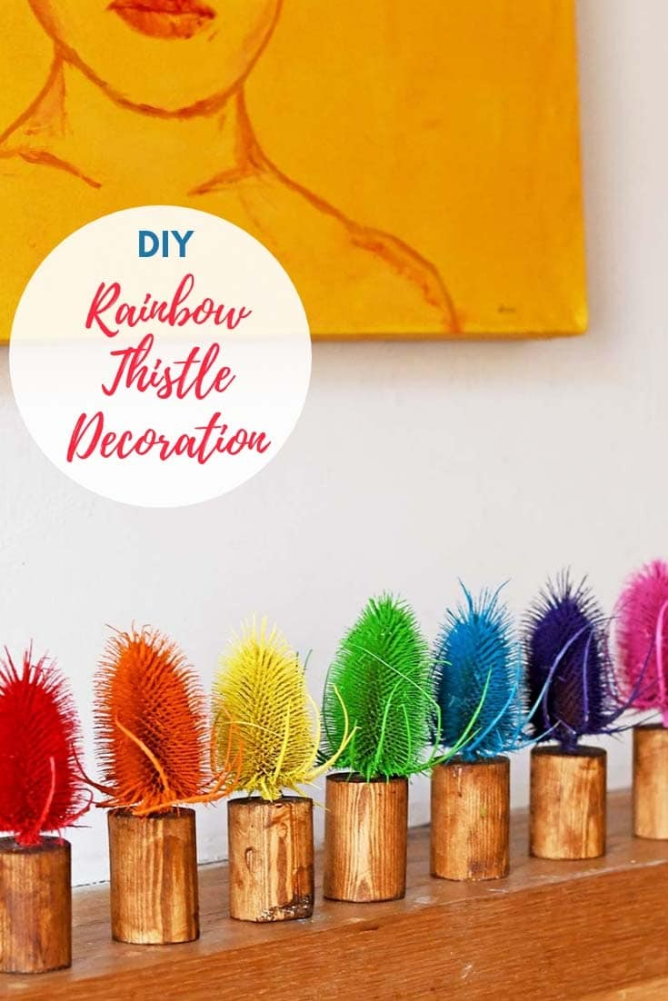 DIY rainbow dried thistle decoration for your mantle.