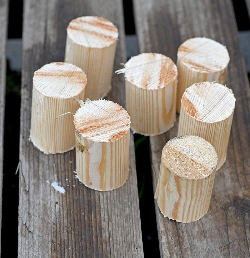 Cut small wooden dowels