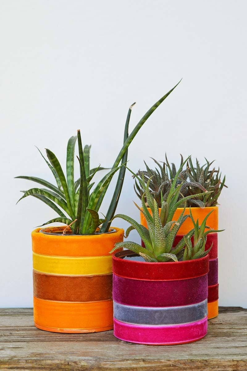 velvet ribbon planters in oranges and purples