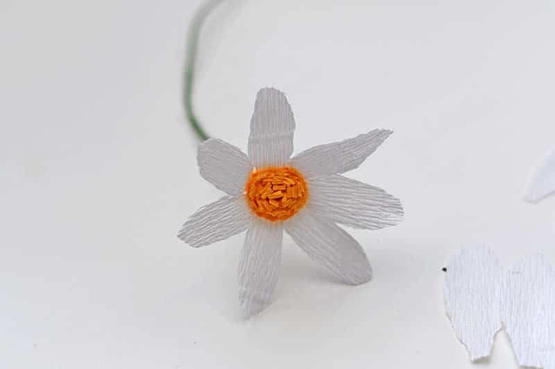 Half finished crepe paper daisy