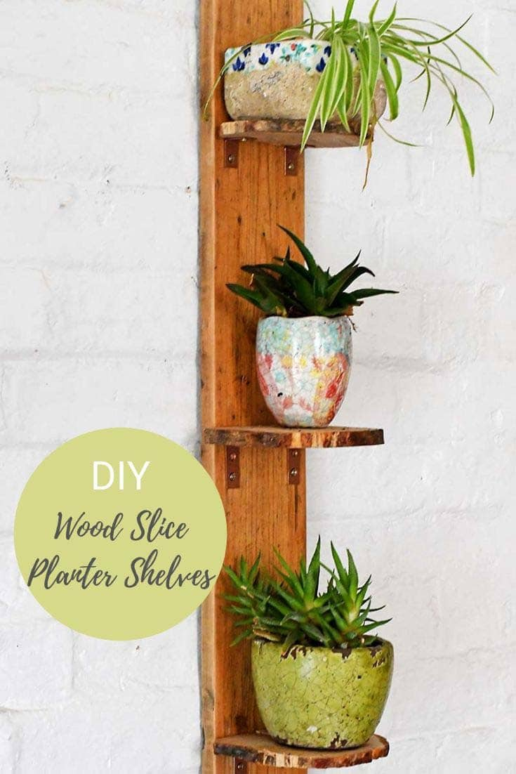 DIY planter shelves from natural wood slices