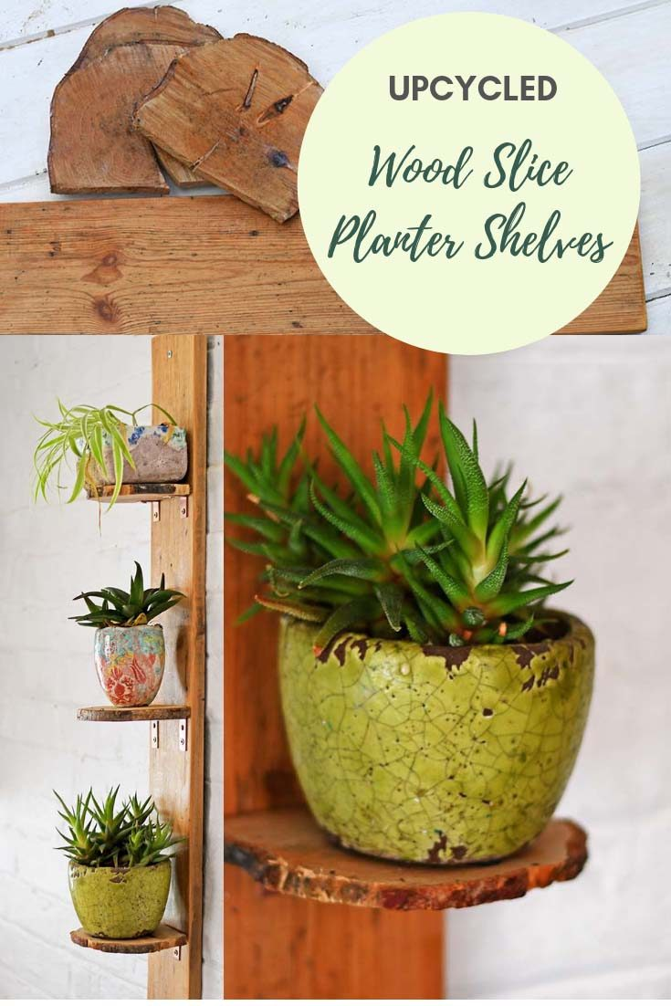 Upcycle wood slices to make simple DIY planter shelves. These shelves have a lovely natural wood edge from the bark of the wood slice. #woodslice
