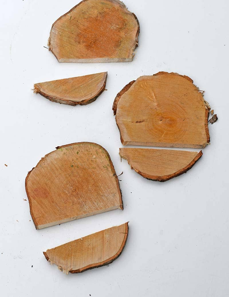 cut wood slices