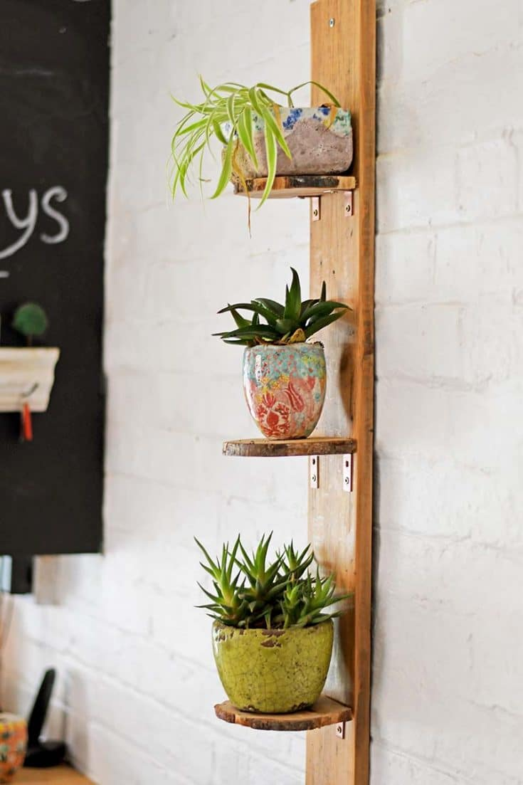 DIY Planter Shelves From Wood Slices