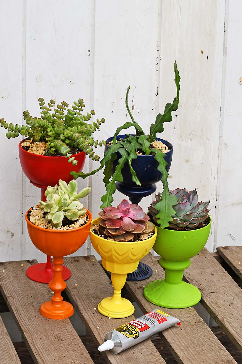 rainbow upcycled succulent planters