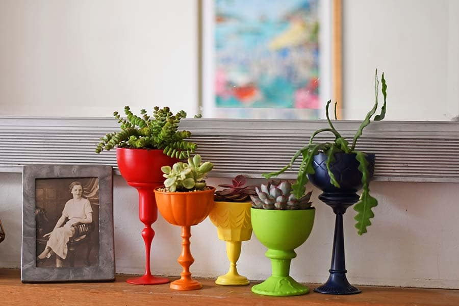 rainbow planters for succulents