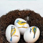 Blue tit egg decoupage