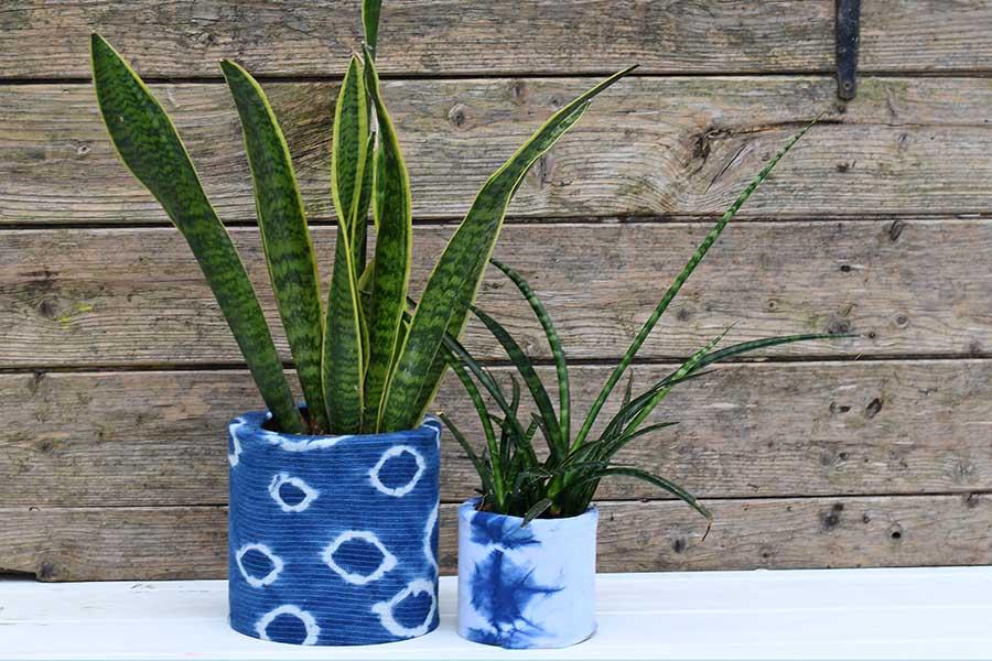 2 indigo planters