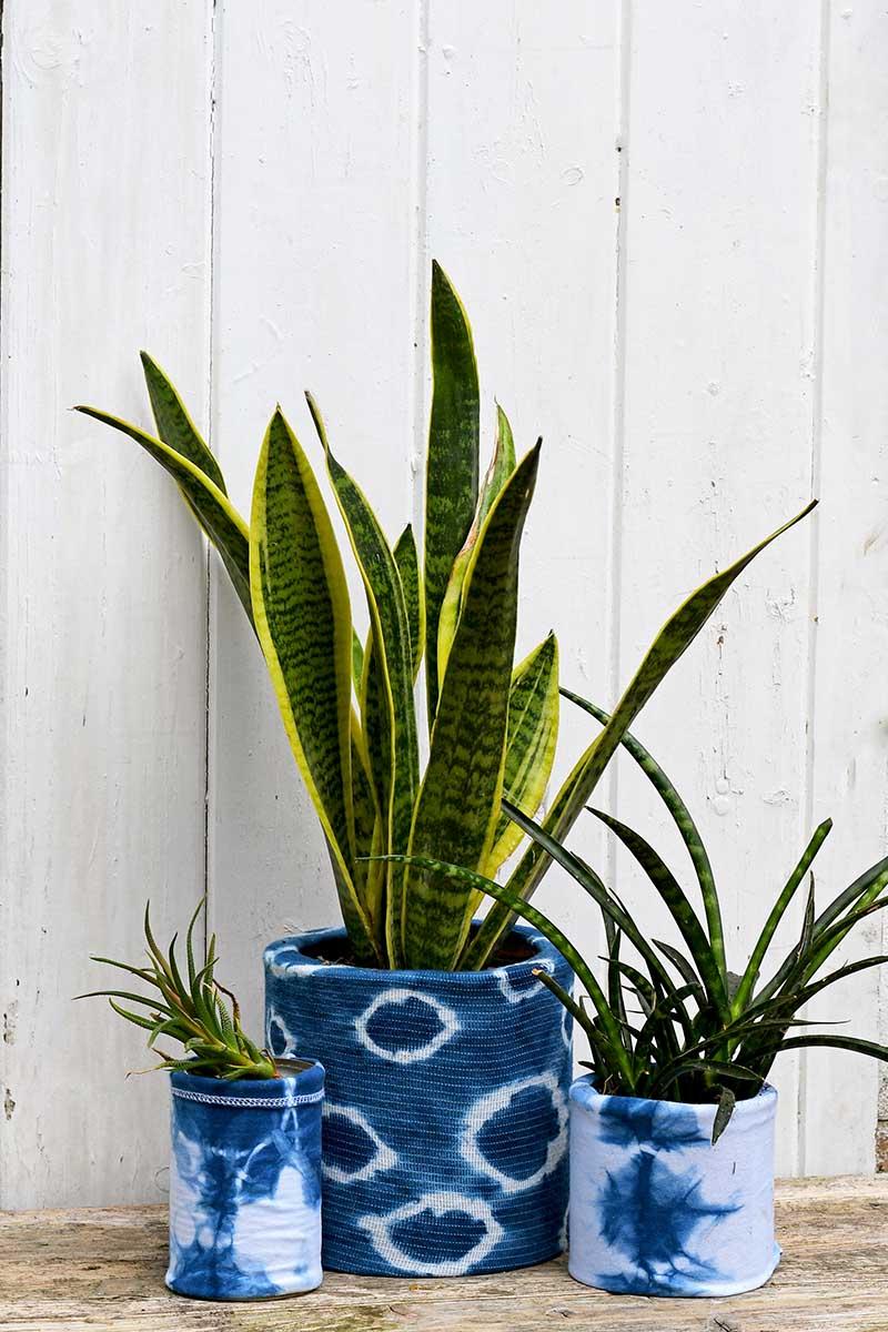 Upcycled indigo planters