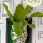 DIY tropical leaf plant