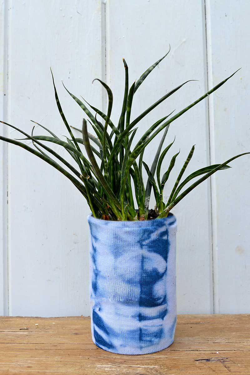 Shibori tin can planters.