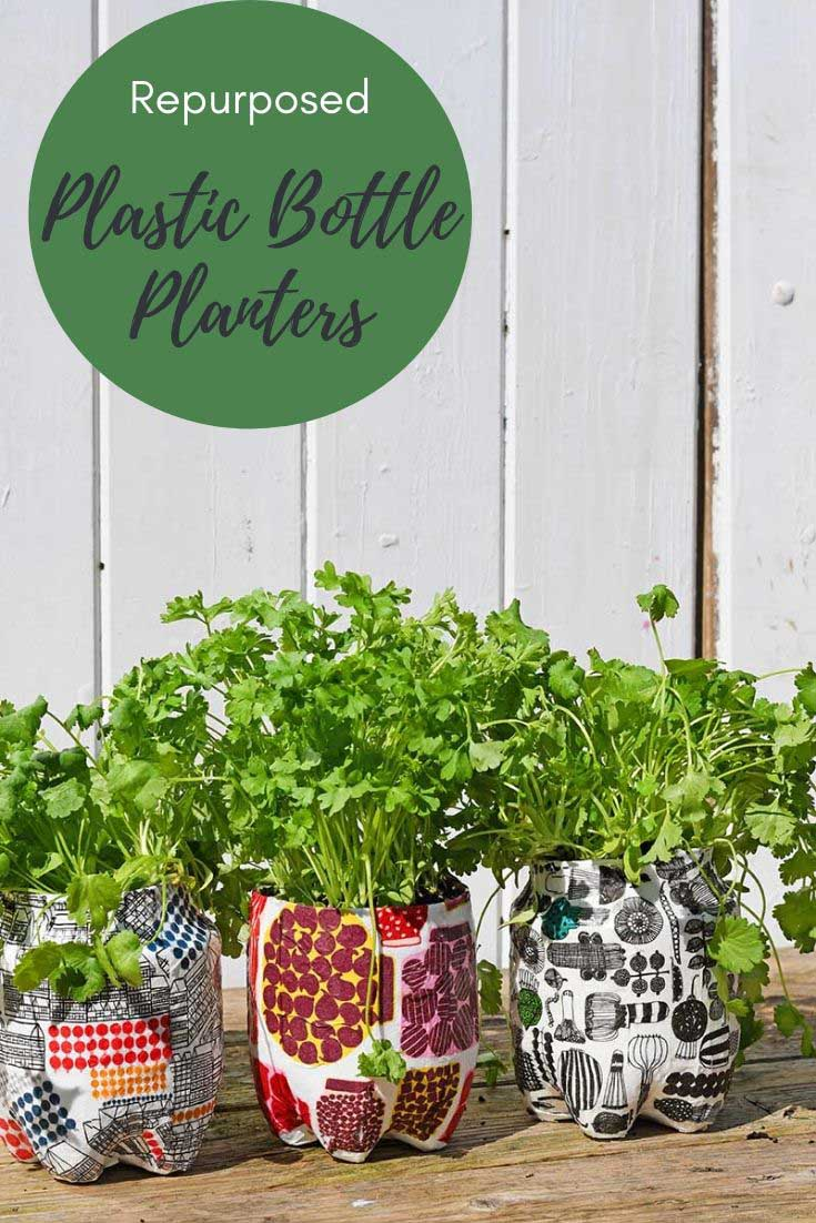 repurposed plastic bottle herb garden