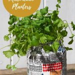 epurposed soda bottle planters