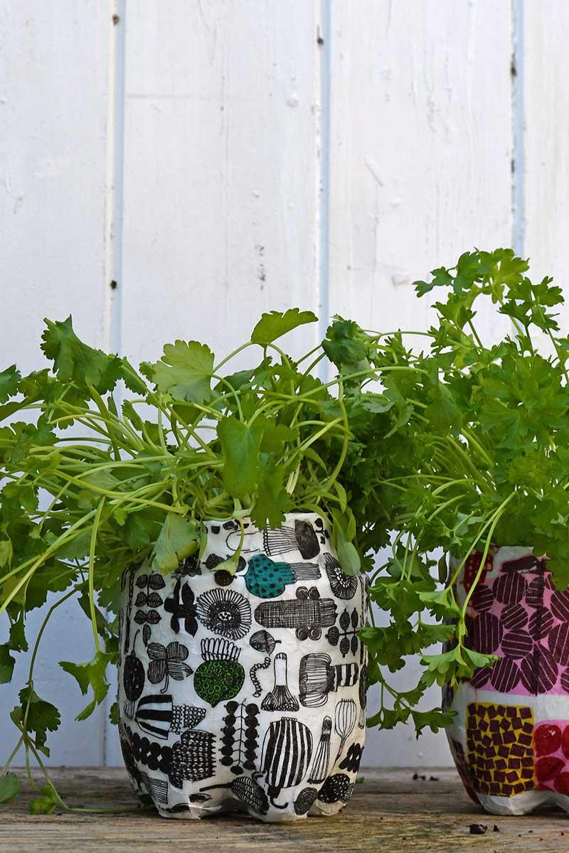 Marimekko herb garden