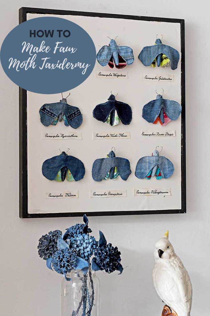 Framed faux moths insect display
