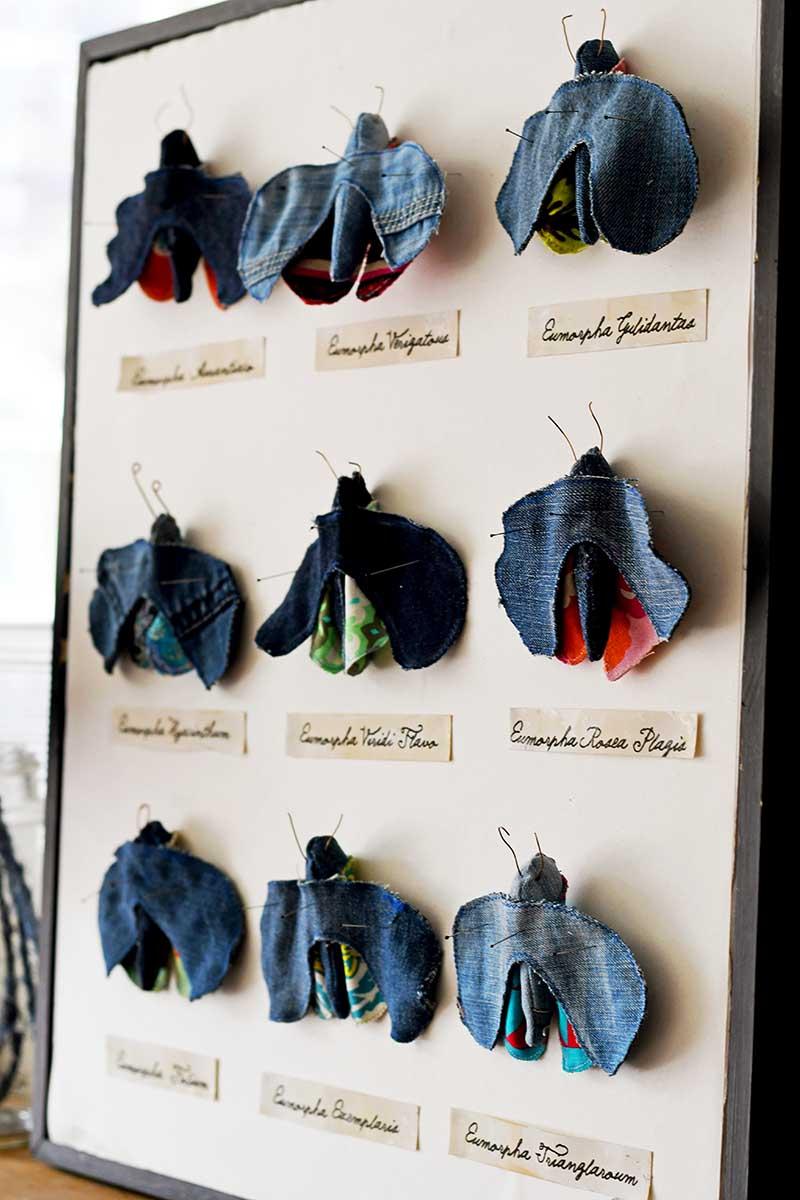 upcycled denim moth taxidermy