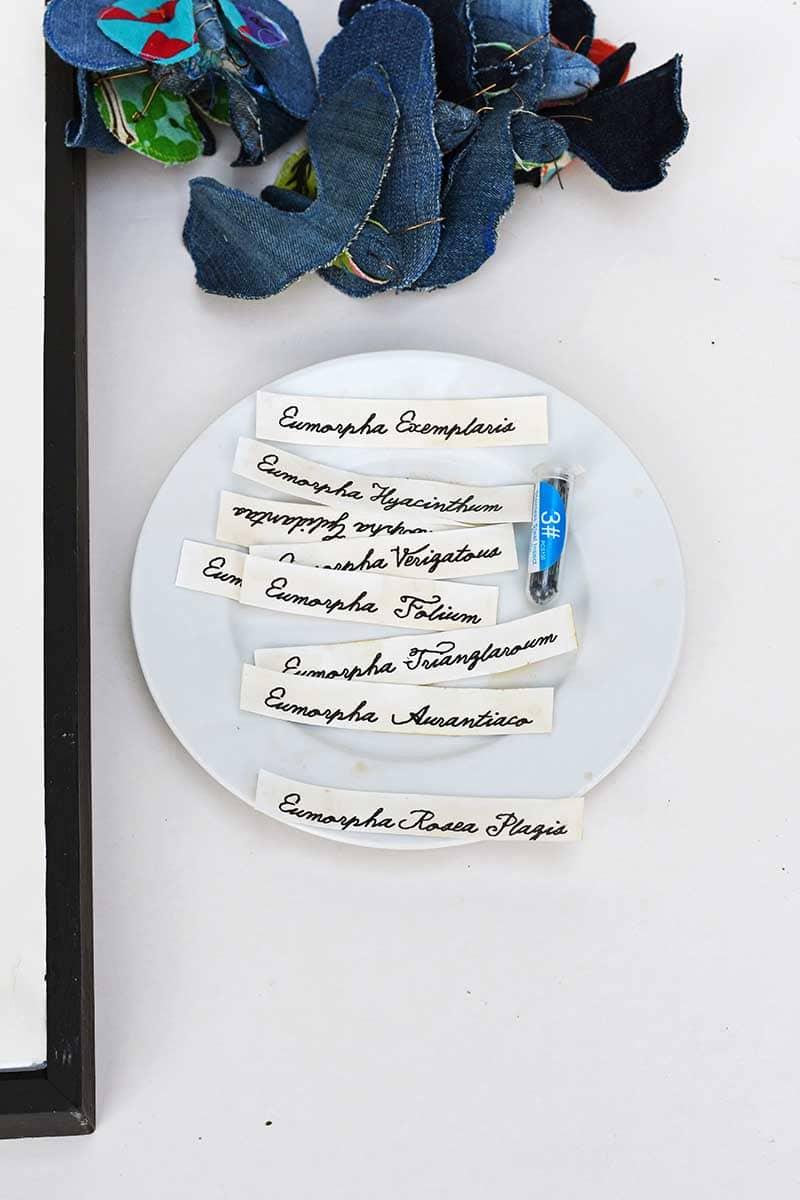 Labels for denim moths