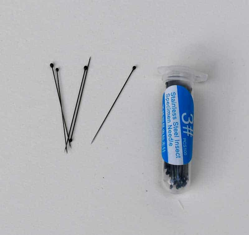insect mounting pins