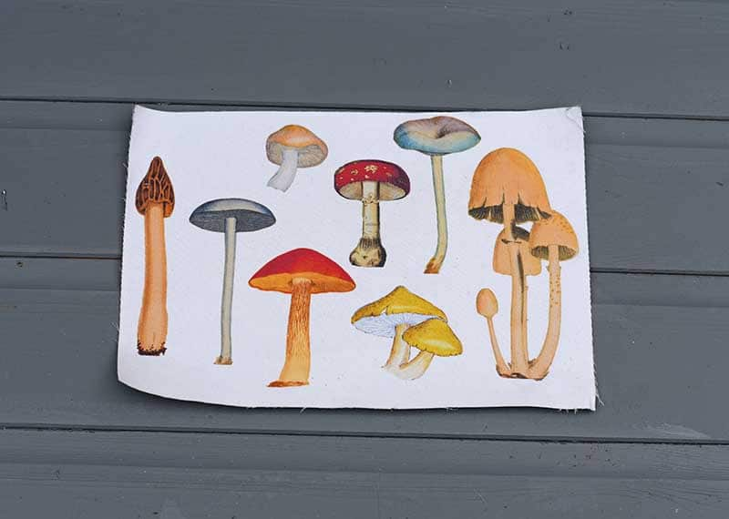 Printed mushrooms