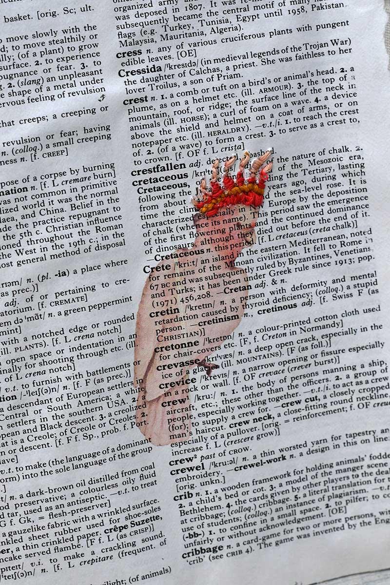 cockatoo dictionary art