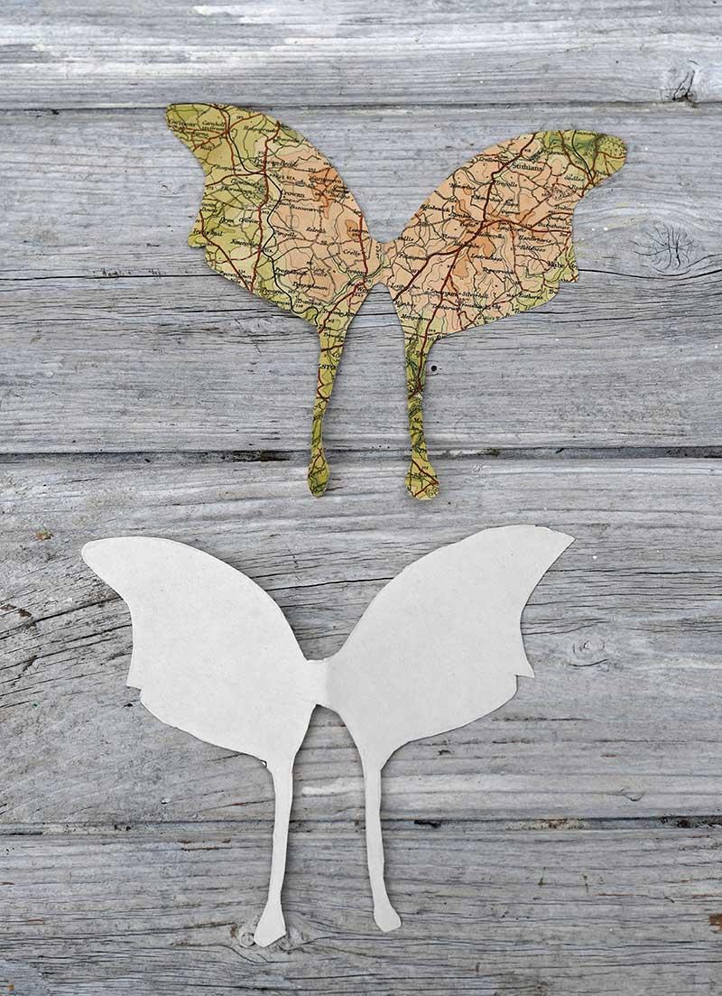 cutout-large-winged