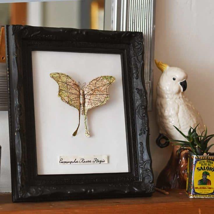 framed map paper moth