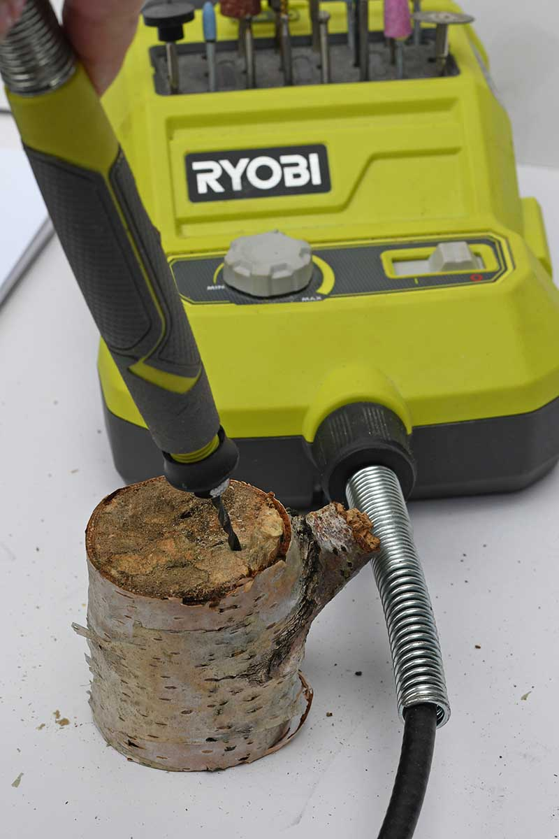 Drilling holes into the stump.
